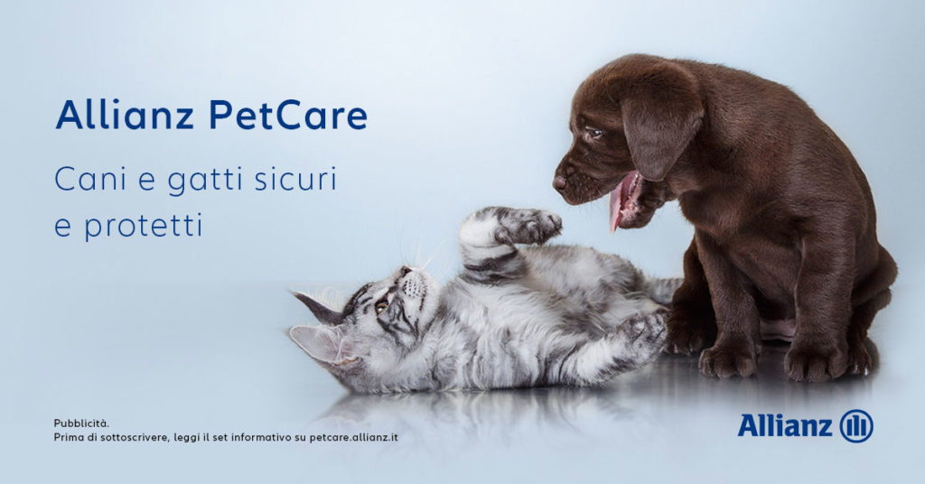 PetCare